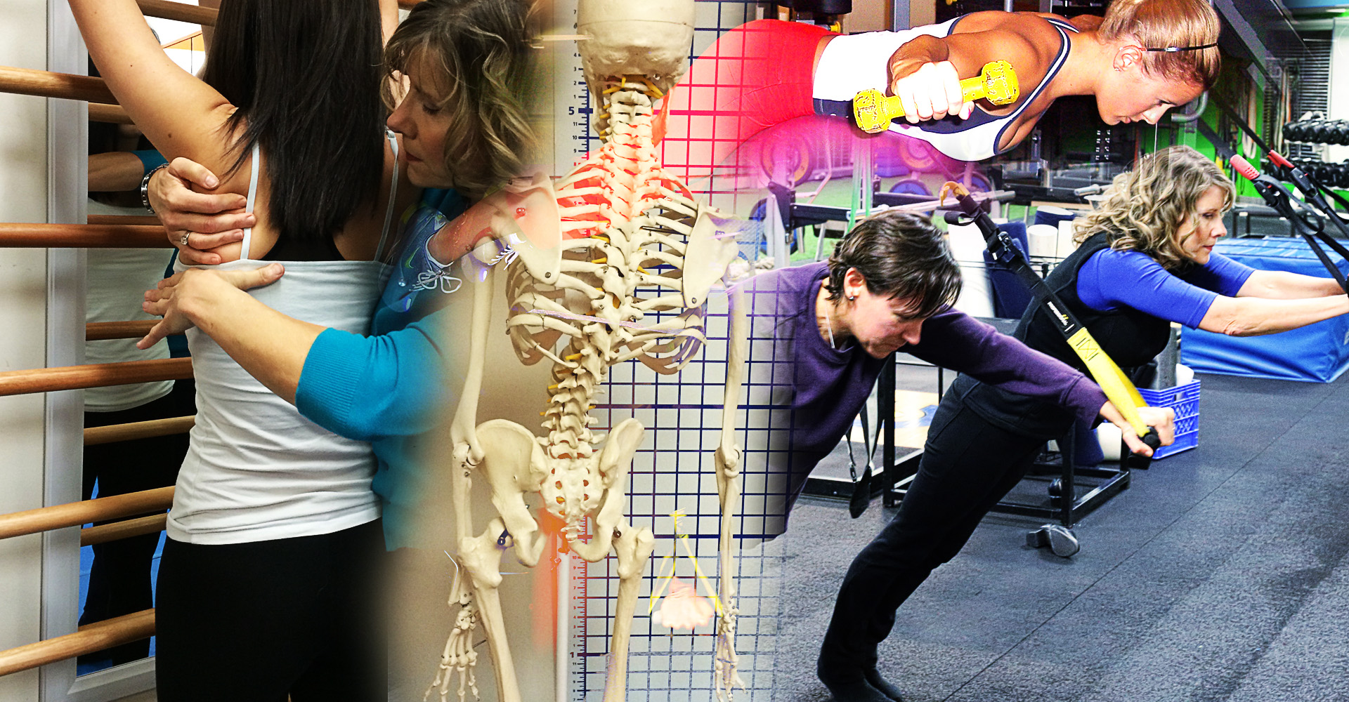 Integrated physical therapy - Integrated Physical Therapy